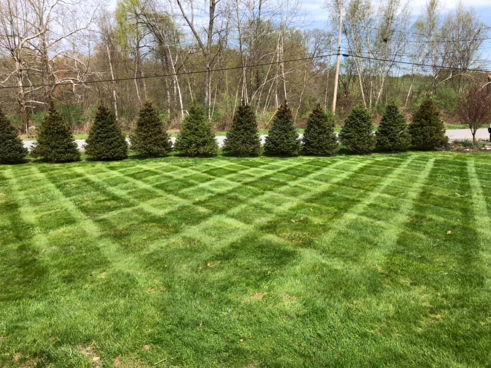 Supreme Green Lawn Care & Landscaping